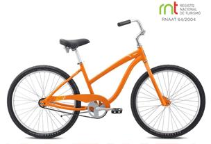 frota-bicicletas